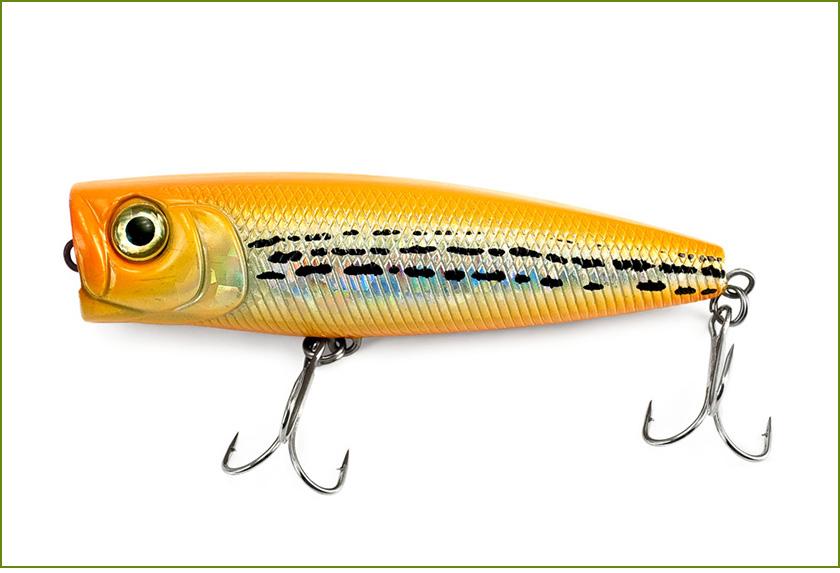 MPLUX-les-poppers-et-les-poissons-nageurs-v2